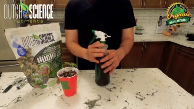 How To Series: How To Use Dutch Science Nutrients