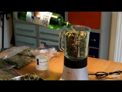 Making cannabis oil using the cold method