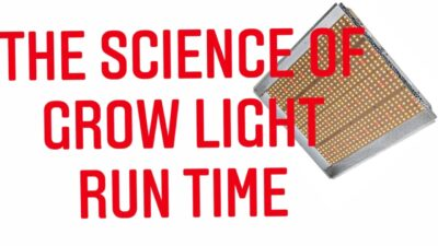 CAN YOU LEAVE YOUR LED GROW LIGHTS ON ALL THE TIME. THE SCIENCE OF LIGHT 💡 | Gardening in Canada