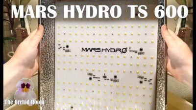 MARS HYDRO TS 600 Unboxing! Awesome New Grow Lights For High Light Orchids!