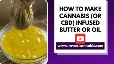 How to make SIMPLE cannabis oil