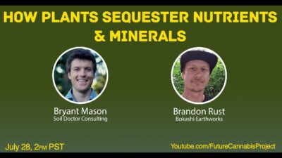 How Plants Sequester Nutrients & Minerals